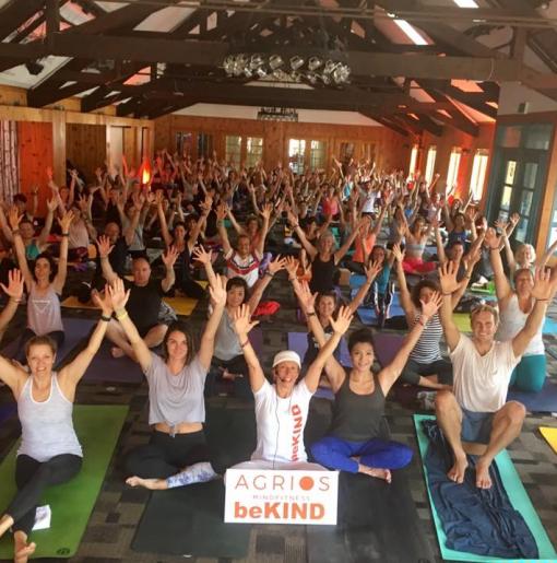 yoga and meditation web square